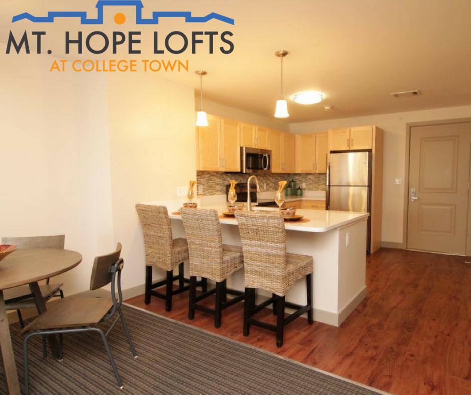 mt hope lofts room